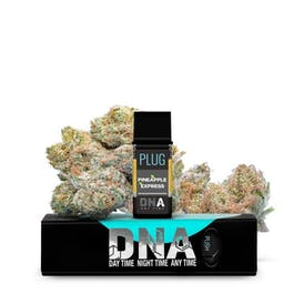Plug DNA - Pineapple Express